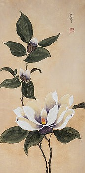 Magnolia by Nona Lightman